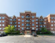 3401 North Carriageway Drive Unit 303, Arlington Heights image
