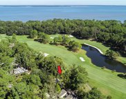 6 Black Rail Lane, Hilton Head Island image