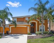 117 African Daisy Court, Davenport image