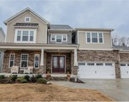223  Copper Hawk Court, Fort Mill image