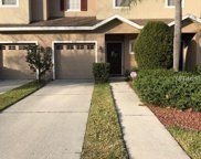 4541 Amberly Oaks Court, Tampa image