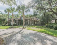 11610 Osprey Pointe Boulevard, Clermont image