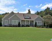 520 Branch Cove, Odenville image