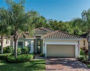 12125 Chrasfield Chase, Fort Myers image
