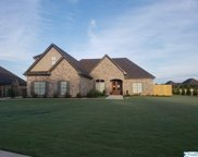 17191 Lochton Drive, Athens image