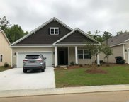 204 Rolling Woods Ct., Little River image