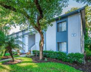 104 Cypress Lane Unit 4-1, Oldsmar image
