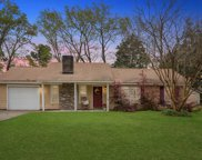 310 E Shore Lane, Charleston image