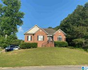 1355 Shelby Forest Court, Chelsea image