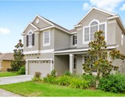 19309 Water Maple Drive, Tampa image