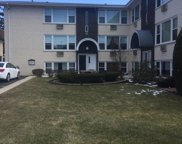 5947 North Odell Avenue Unit 1N, Chicago image