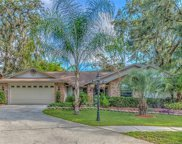 12802 Crispwood Court, Riverview image