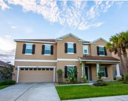 11206 Coventry Grove Circle, Lithia image