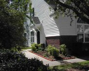164 Palisade Loop Unit 164, Pawleys Island image
