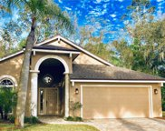 895 Crestridge Circle, Tarpon Springs image