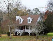 7136 Old Springville Rd, Pinson image
