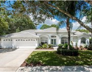 1002 Kings Way Lane, Tarpon Springs image