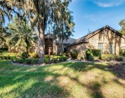604 W Palm Valley Drive, Oviedo image