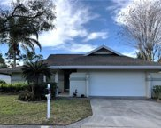 13606 Clubside Drive, Tampa image