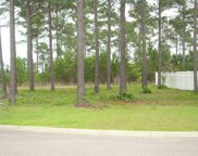 2608 Painted Trillium Ct., Myrtle Beach image