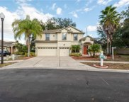 5824 Fish Crow Place, Land O' Lakes image