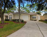 4209 Chamberlain Way, Clermont image