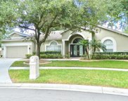 9627 Norchester Circle, Tampa image