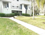 7242 E Bank Drive Unit 7242, Tampa image