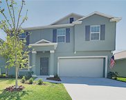 10233 Strawberry Tetra Drive, Riverview image
