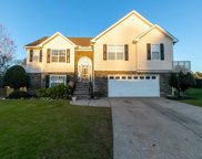 3163 Morgan Box Lane, Buford image