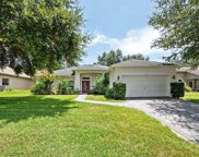 1516 Lucky Pennie Way, Apopka image