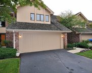 50 Oak Creek Drive, Burr Ridge image