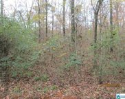 Cross St Unit 2.80 acres, Springville image