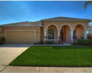 12923 Tar Flower Drive, Tampa image
