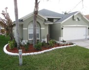 10255 Oasis Palm Drive, Tampa image