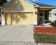 8216 Midnight Sun Court, Riverview image