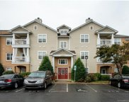 17146  Red Feather Drive Unit #17146, Charlotte image