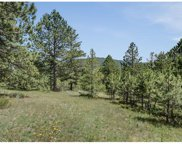 7325 Red Tail Way, Evergreen image