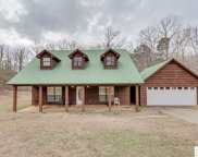 1780 Ruggs Bluff Road, Downsville image