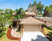 3133 Berridge Lane, Orlando image