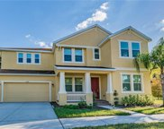 6948 Rocky Canyon Way, Tampa image