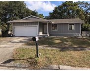 4991 Robin Trail, Palm Harbor image