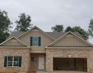 2348 Misty Ivy Ct, Buford image