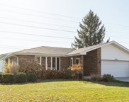 8111 Anne Drive, Orland Park image