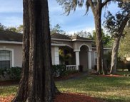 9914 Country Carriage Circle, Riverview image