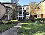 4115 Chatham Oak Court Unit 222, Tampa image