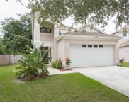 14920 Deer Meadow Drive, Lutz image