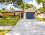 11505 Smokethorn Drive, Riverview image