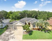 5118 Whispering Leaf Trail, Valrico image
