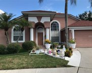 18005 Palm Breeze Drive, Tampa image